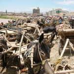 Donkey parking at Sunday market, Kashgar